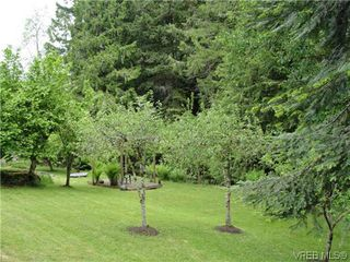 Photo 11: 100 Goward Rd in VICTORIA: SW Prospect Lake Single Family Detached for sale (Saanich West)  : MLS®# 608302