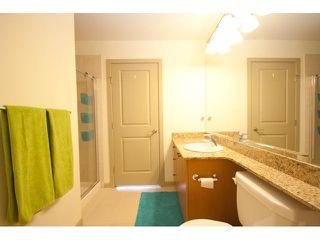 Photo 5: # 405 14 E ROYAL AV in New Westminster: Fraserview NW Condo for sale : MLS®# V1105870