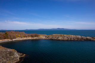 Photo 4: Oceanfront Luxury Masterpiece 4461 Shore Way Victoria BC