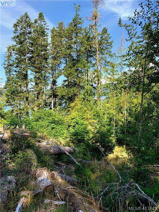 Photo 19: 7120 East Sooke Road in SOOKE: Sk Silver Spray Land for sale (Sooke)  : MLS®# 413813