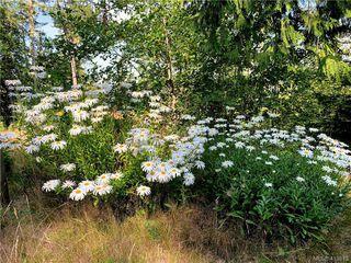 Photo 17: 7120 East Sooke Road in SOOKE: Sk Silver Spray Land for sale (Sooke)  : MLS®# 413813