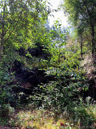 Photo 20: 7120 East Sooke Road in SOOKE: Sk Silver Spray Land for sale (Sooke)  : MLS®# 413813
