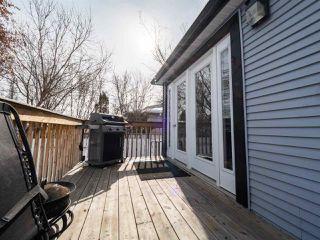 Photo 39: 11165 52 Street in Edmonton: Zone 09 House for sale : MLS®# E4192515