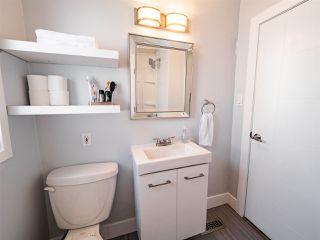 Photo 19: 11165 52 Street in Edmonton: Zone 09 House for sale : MLS®# E4192515