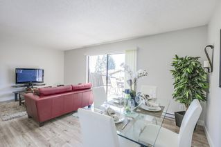 Photo 13: 1016 ROCHESTER Avenue in Coquitlam: Maillardville House 1/2 Duplex for sale : MLS®# R2452037