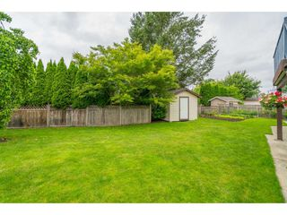 "Photo 21: 5089 214A Street in Langley: Murrayville House for sale in ""Murrayville"" : MLS®# R2472485"