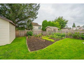 "Photo 22: 5089 214A Street in Langley: Murrayville House for sale in ""Murrayville"" : MLS®# R2472485"