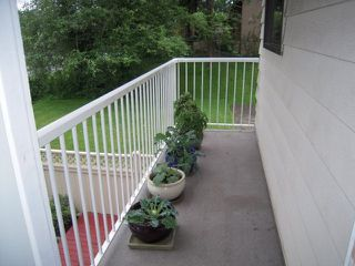 Photo 13: 6 3075 TRETHEWEY Street in Abbotsford: Abbotsford West Townhouse for sale : MLS®# F1315428