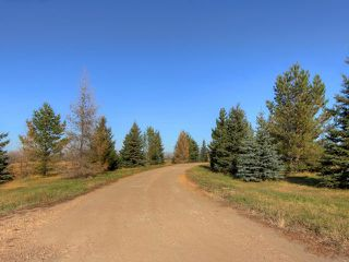 Photo 7: 53134 RR 225: Rural Strathcona County House for sale : MLS®# E4175925