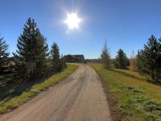 Photo 9: 53134 RR 225: Rural Strathcona County House for sale : MLS®# E4175925