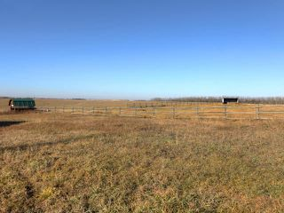 Photo 26: 53134 RR 225: Rural Strathcona County House for sale : MLS®# E4175925
