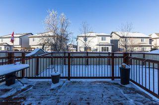 Photo 40: 851 SOUTHFORK Green: Leduc House for sale : MLS®# E4182844