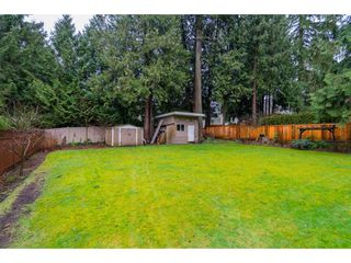 """Photo 19: 4620 209A Street in Langley: Langley City House for sale in """"Uplands"""" : MLS®# R2431570"""