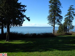 "Photo 1: 1687 OCEAN PARK Road in Surrey: Crescent Bch Ocean Pk. House for sale in ""Ocean Park"" (South Surrey White Rock)  : MLS®# F1222696"