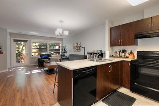 Photo 6: 312 1481 Glenmore Road in Kelowna: North Glenmore House for sale (Central Okanagan)  : MLS®# 10167847