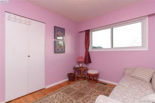 Photo 17: 4374 Elnido Cres in VICTORIA: SE Mt Doug Single Family Detached for sale (Saanich East)  : MLS®# 831755
