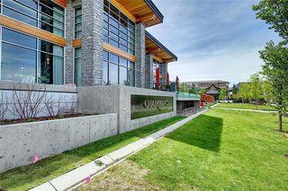 Photo 34: 118 20 MAHOGANY Mews SE in Calgary: Mahogany Apartment for sale : MLS®# C4299707