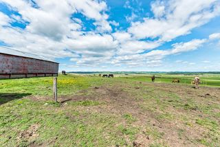 Photo 39: 386091 112 Street: Rural Foothills County Detached for sale : MLS®# C4301628