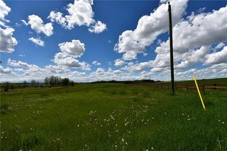 Photo 8: HWY 27 RANGE ROAD 272: Rural Mountain View County Land for sale : MLS®# C4302641