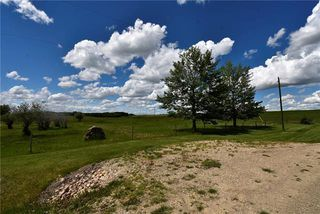 Photo 5: HWY 27 RANGE ROAD 272: Rural Mountain View County Land for sale : MLS®# C4302641