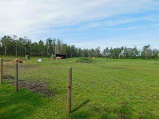 Photo 29: 17 Aspen Ridge Crescent: Rural Sturgeon County House for sale : MLS®# E4211253