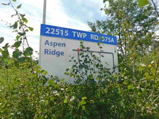 Photo 33: 17 Aspen Ridge Crescent: Rural Sturgeon County House for sale : MLS®# E4211253