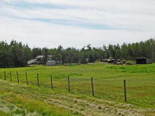 Photo 31: 17 Aspen Ridge Crescent: Rural Sturgeon County House for sale : MLS®# E4211253