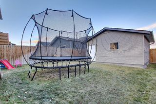 Photo 47: 82 Nolan Hill Drive NW in Calgary: Nolan Hill Detached for sale : MLS®# A1042013