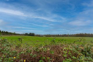 Photo 37: 26593 28 Avenue in Langley: Aldergrove Langley House for sale : MLS®# R2526387