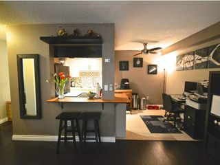 Photo 3: # 105 2277 MCGILL ST in Vancouver: Hastings Condo for sale (Vancouver East)  : MLS®# V1054708