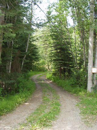 Photo 9: 11600 Highway 33 in Kelowna: Joe Rich House for sale (Okanagan Mainland)  : MLS®# 10091744
