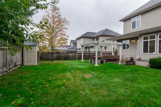 Photo 19: 2864 SHUTTLE STREET in Abbotsford: House for sale : MLS®# R2006617
