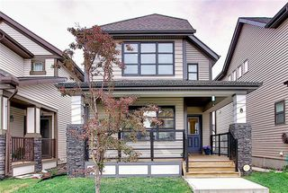 Photo 5: 8 COPPERPOND Avenue SE in Calgary: Copperfield Detached for sale : MLS®# C4296970