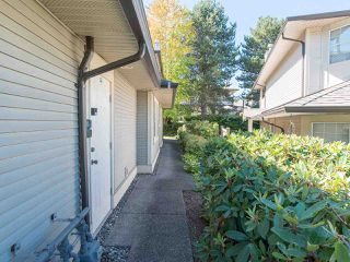 """Photo 5: 170 20391 96 Avenue in Langley: Walnut Grove Townhouse for sale in """"CHELSEA GREEN"""" : MLS®# R2494779"""