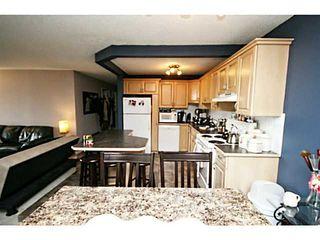 Photo 11: 401 511 56 Avenue SW in CALGARY: Windsor Park Condo for sale (Calgary)  : MLS®# C3561217