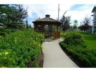 Photo 15: 3124 6818 PINECLIFF Grove NE in CALGARY: Pineridge Condo for sale (Calgary)  : MLS®# C3580642