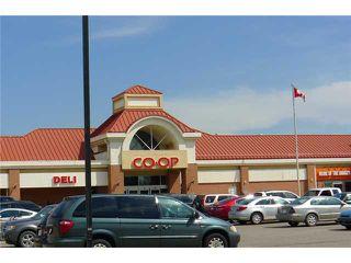 Photo 18: 3124 6818 PINECLIFF Grove NE in CALGARY: Pineridge Condo for sale (Calgary)  : MLS®# C3580642