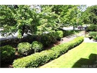Photo 7:  in VICTORIA: Vi Hillside Condo for sale (Victoria)  : MLS®# 369805