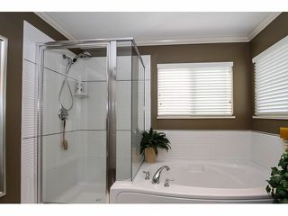 Photo 12: 6976 196A ST in Langley: Willoughby Heights House for sale : MLS®# F1420687