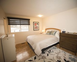 Photo 16: 10408 37 AV NW NW in Edmonton: Zone 16 House  : MLS®# E4105702