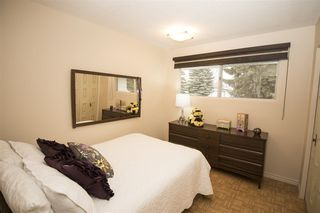 Photo 20: 10408 37 AV NW NW in Edmonton: Zone 16 House  : MLS®# E4105702
