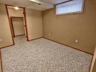 Photo 19: 3804 42 Street in Edmonton: Zone 29 House for sale : MLS®# E4183415