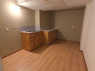 Photo 20: 3804 42 Street in Edmonton: Zone 29 House for sale : MLS®# E4183415
