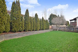Photo 20: 27571 32A Avenue in Langley: Aldergrove Langley House for sale : MLS®# R2438545