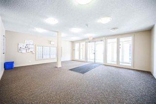 Photo 31: 412 5804 MULLEN Place in Edmonton: Zone 14 Condo for sale : MLS®# E4188690