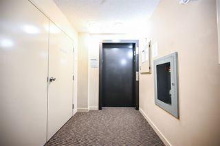 Photo 28: 412 5804 MULLEN Place in Edmonton: Zone 14 Condo for sale : MLS®# E4188690