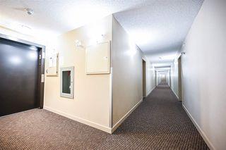 Photo 27: 412 5804 MULLEN Place in Edmonton: Zone 14 Condo for sale : MLS®# E4188690