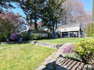 Photo 73: 185 Willow Way in COMOX: CV Comox (Town of) Single Family Detached for sale (Comox Valley)  : MLS®# 837932