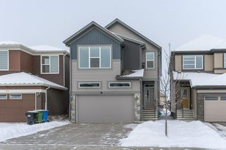Photo 30: 71 SAVANNA Lane NE in Calgary: Saddle Ridge Detached for sale : MLS®# C4294146