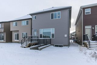 Photo 28: 71 SAVANNA Lane NE in Calgary: Saddle Ridge Detached for sale : MLS®# C4294146